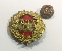 AUSTRIA Badge WWI with Miniature